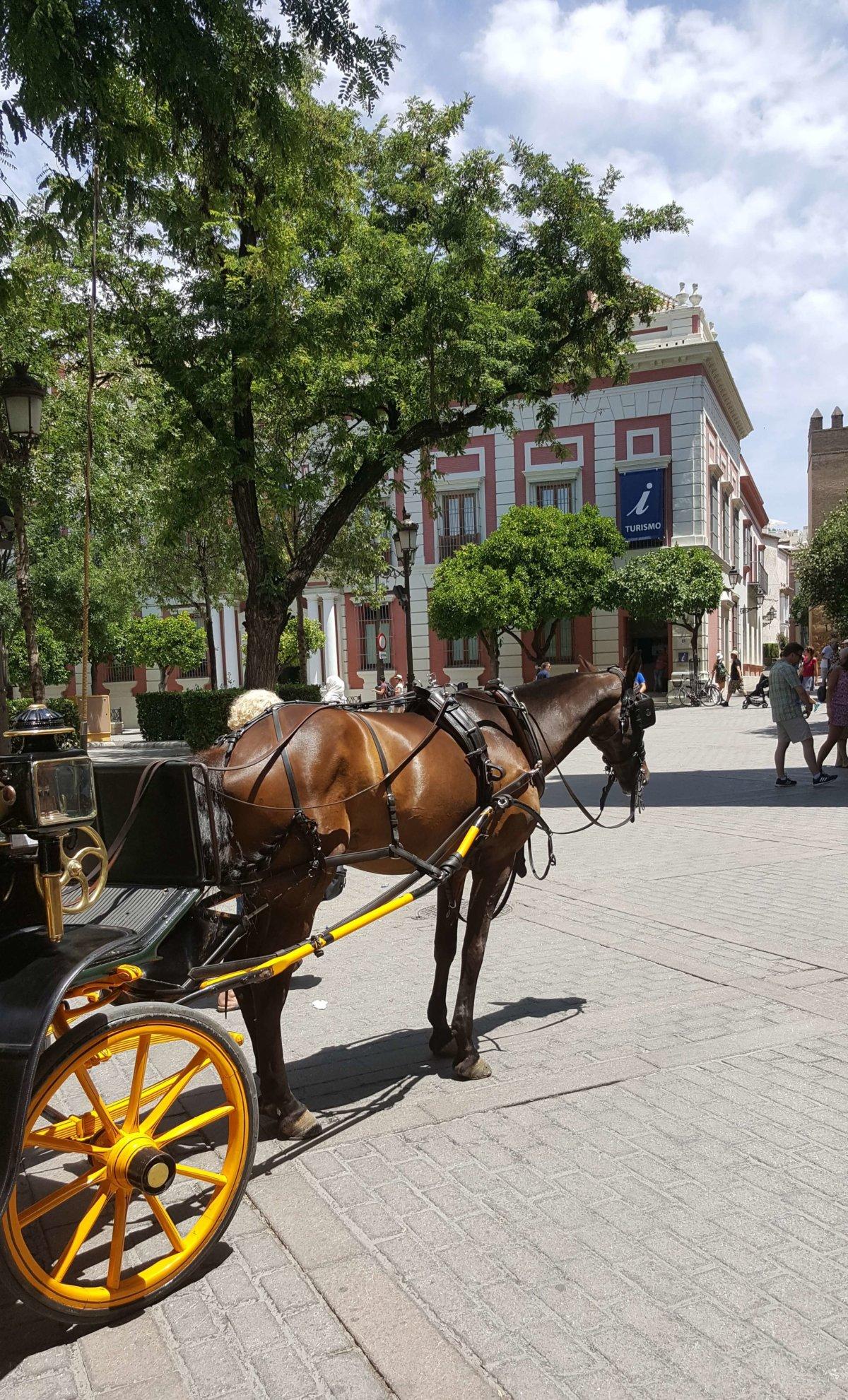 Ein Tag in Sevilla