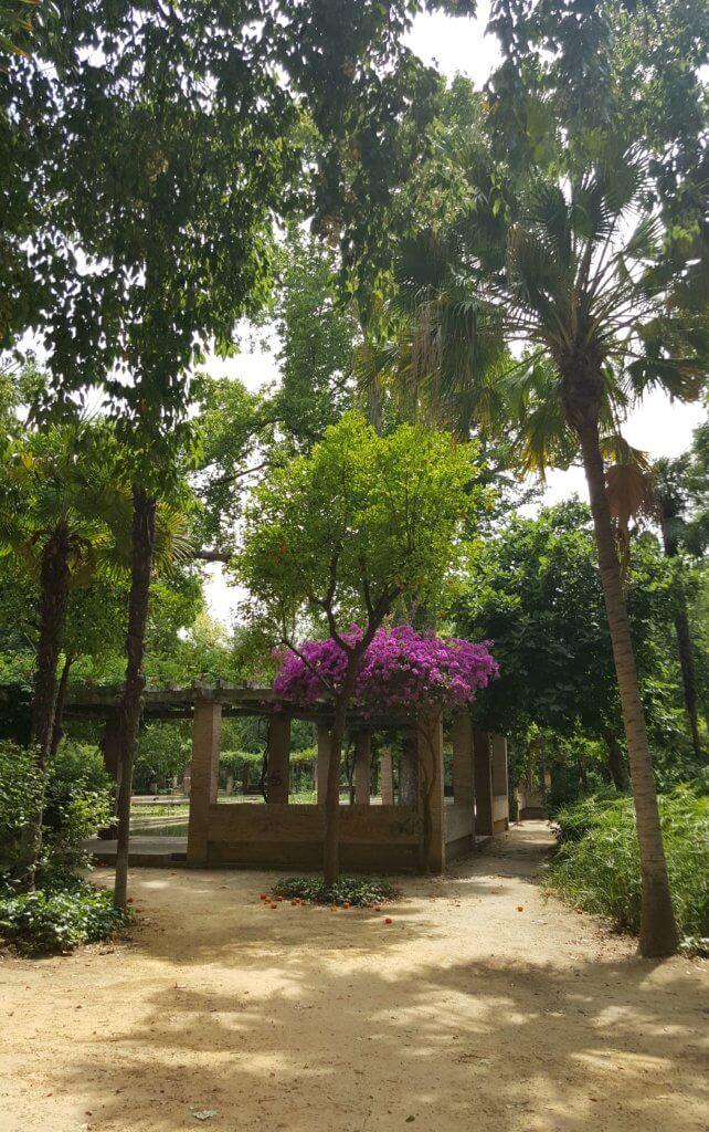Im Parque de María Luisa