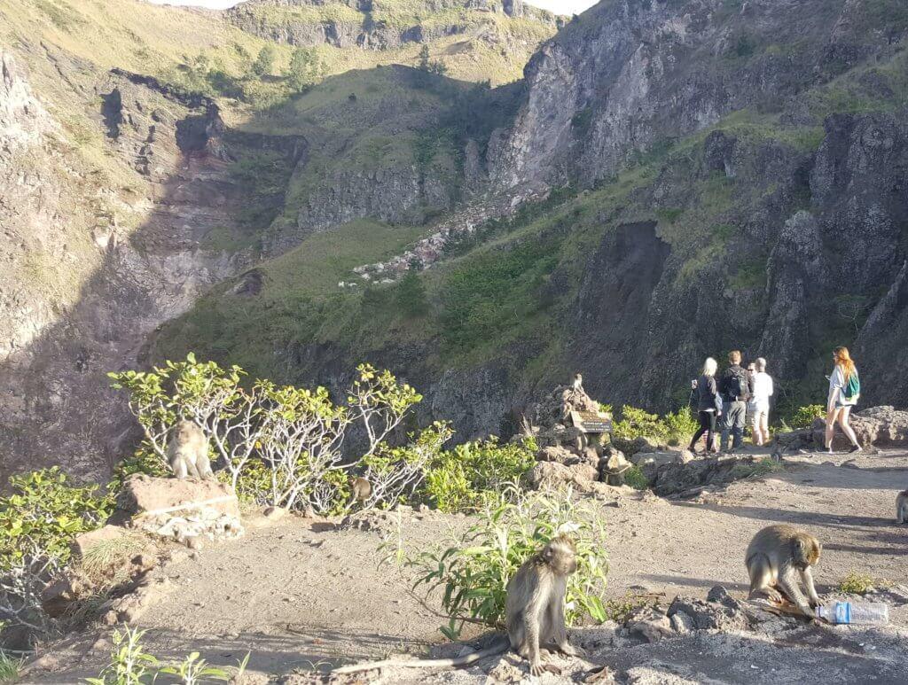 Affen am Krater des Gunung Batur
