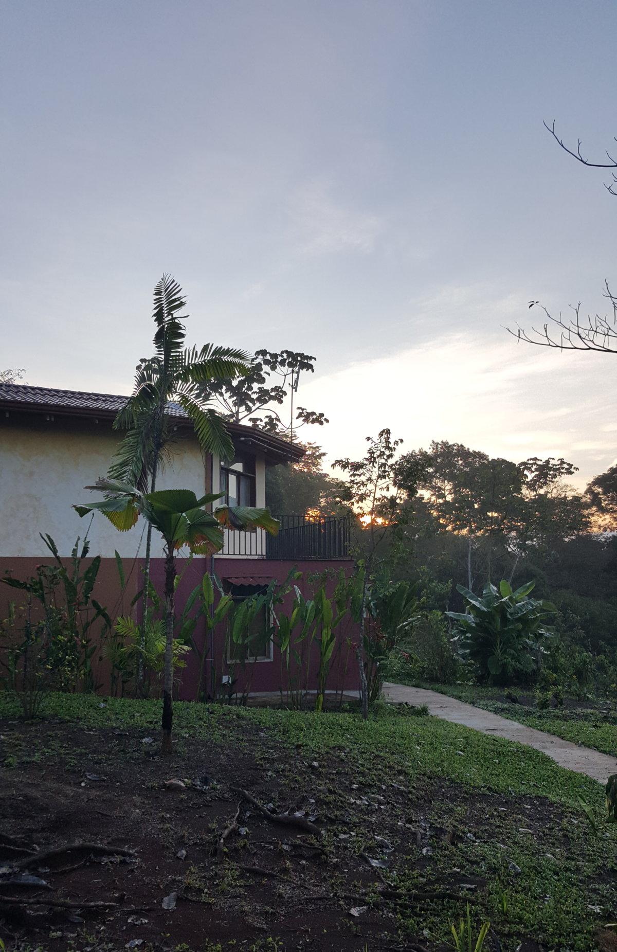 Mein Tagesablauf in der Tierauffangstation Paraíso Carlisa