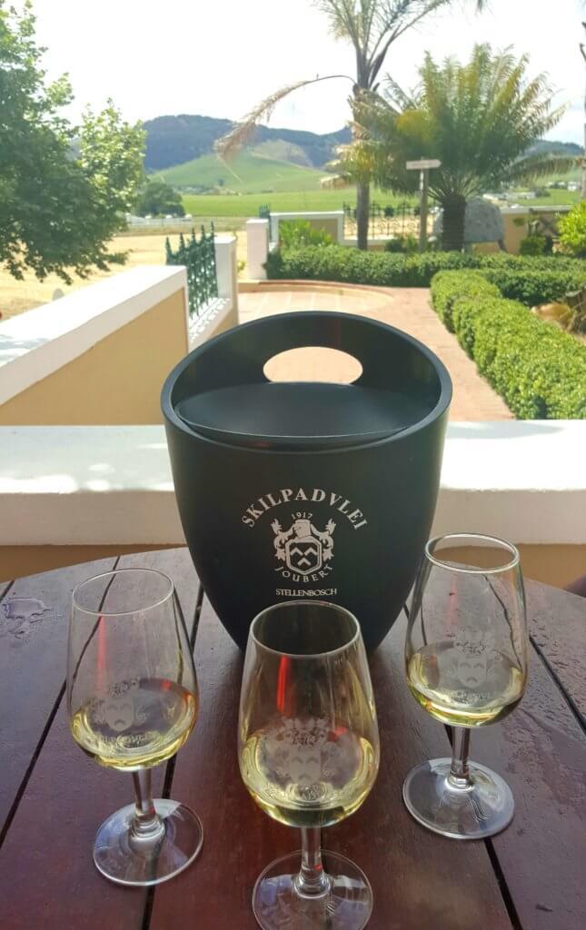 Weinprobe in der Skilpadvlei Wine farm Stellenbosch