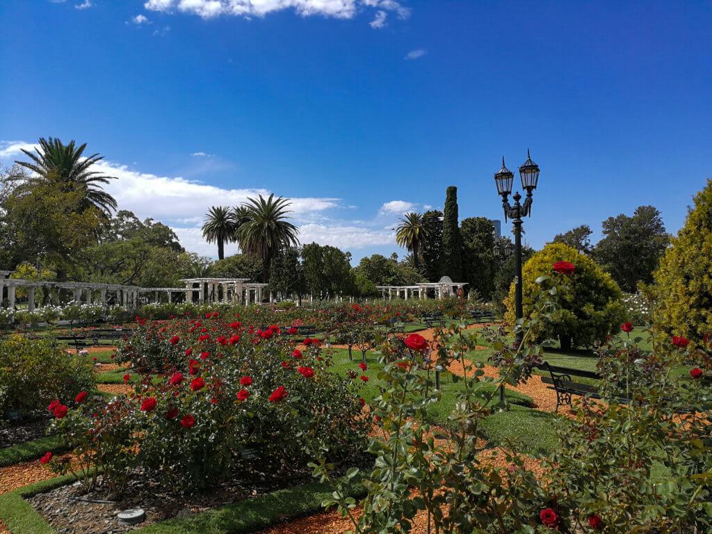 botanischer Garten in Palermo