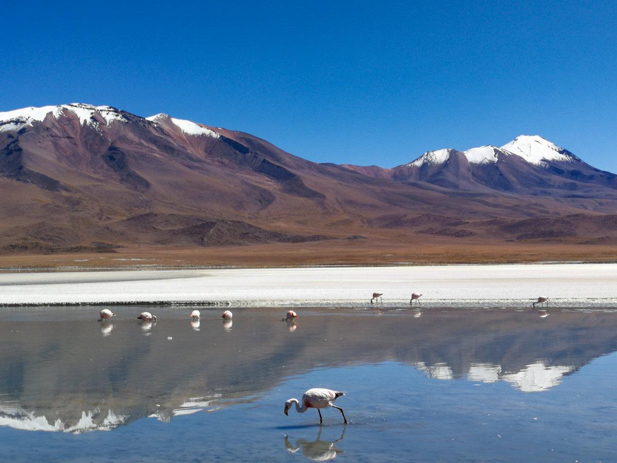 Weltreise -> Bolivien: Erlebnisse, Route, Kosten