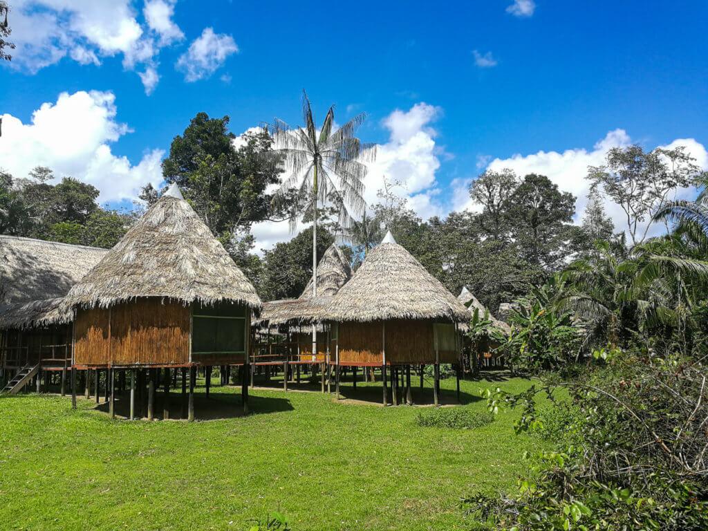 in der Dschungel-Lodge