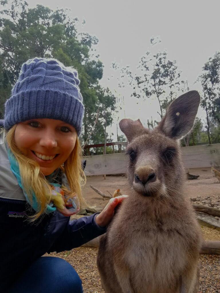Känguru-Selfie